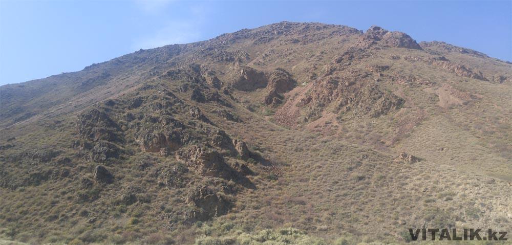 горы чарын
