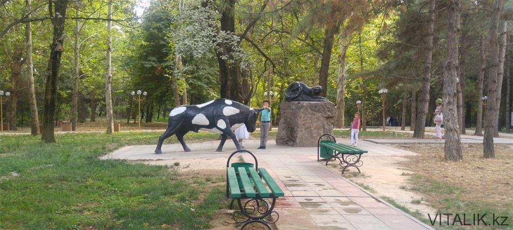 дендропарк быки