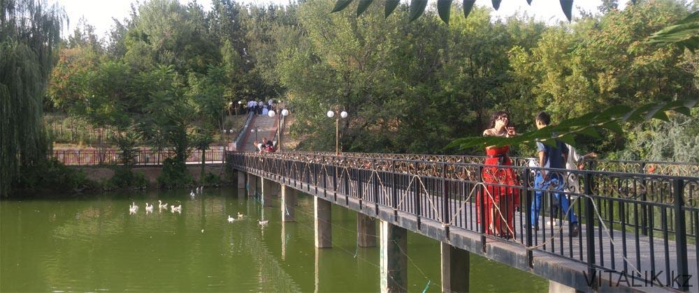 мост озеро дендропарк шымкент