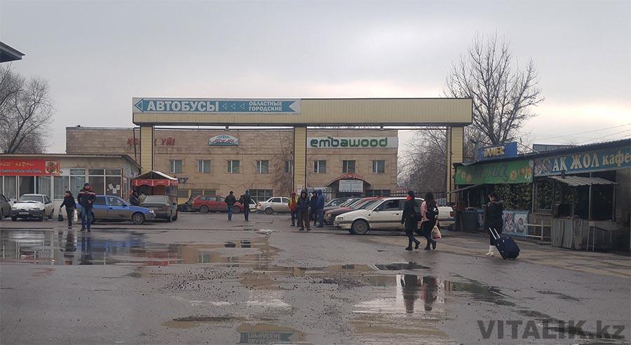 Автобус до Ташкента из Алматы
