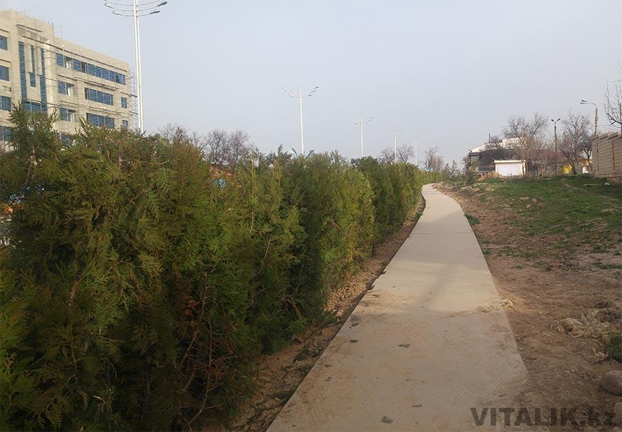 Тротуар Ташкент