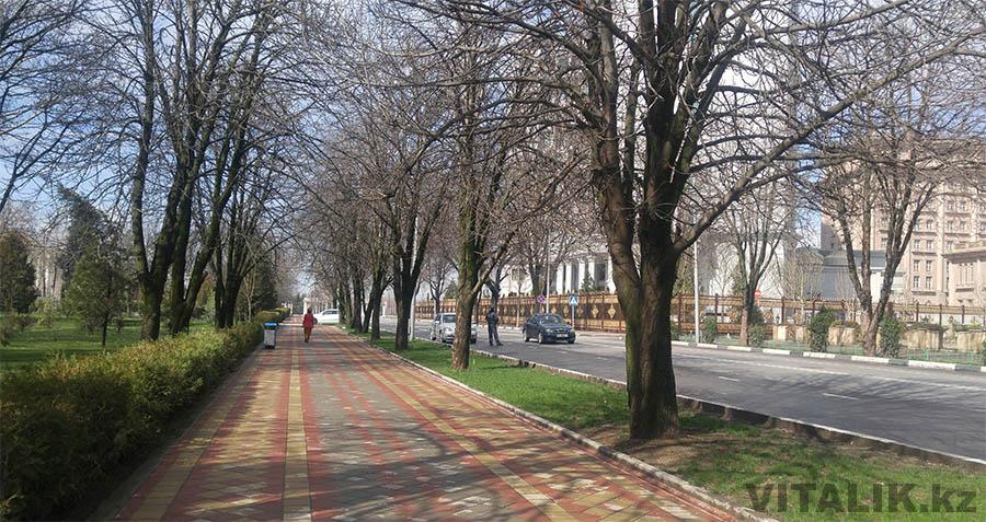 Шотемура Парк Рудаки Душанбе