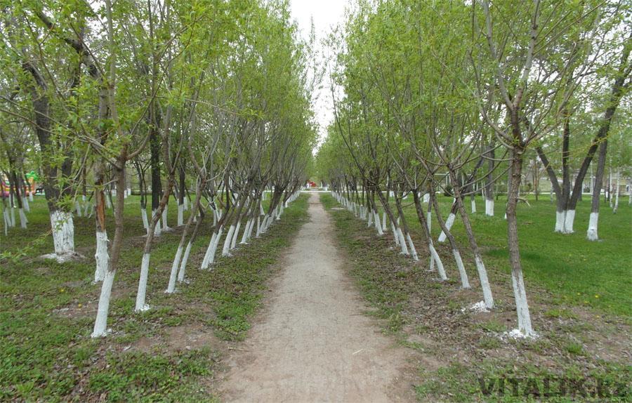 Астана парк аллея