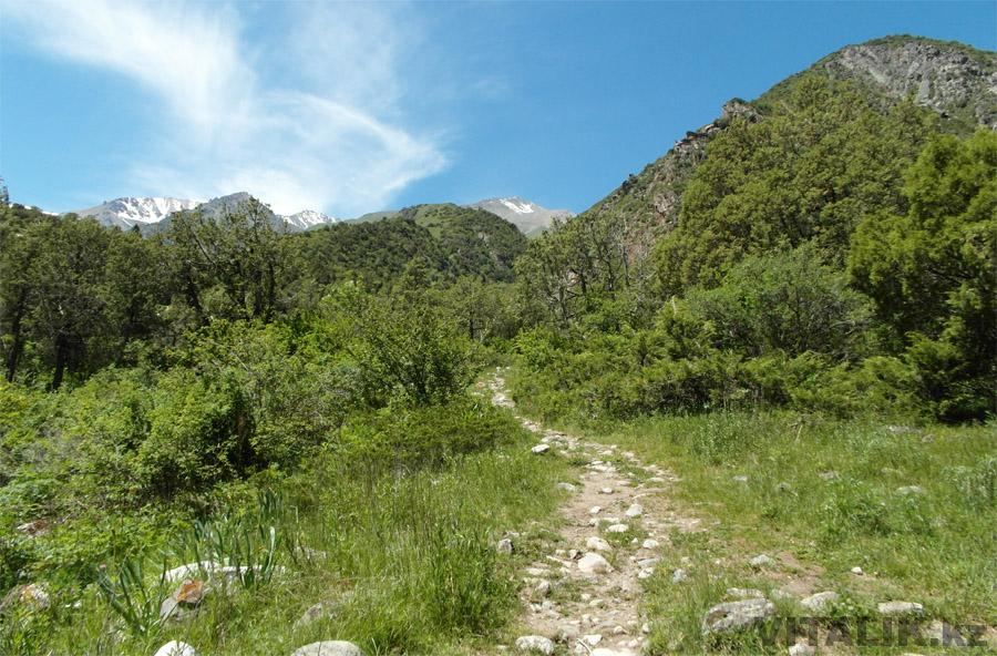 Тропинка до кладбища альпинистов