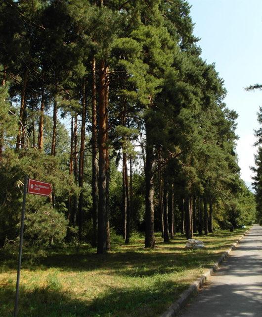Ботанический Сад Алматы 2018