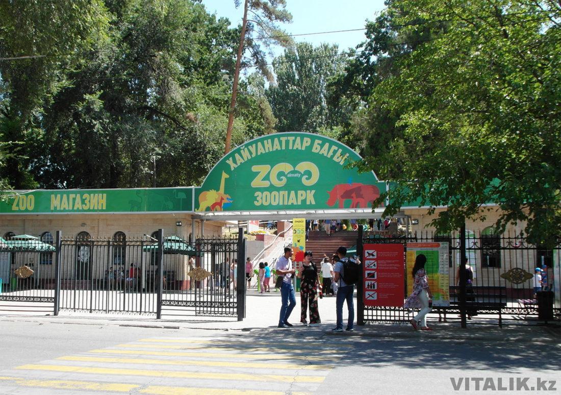 Зоопарк Алматы 2018
